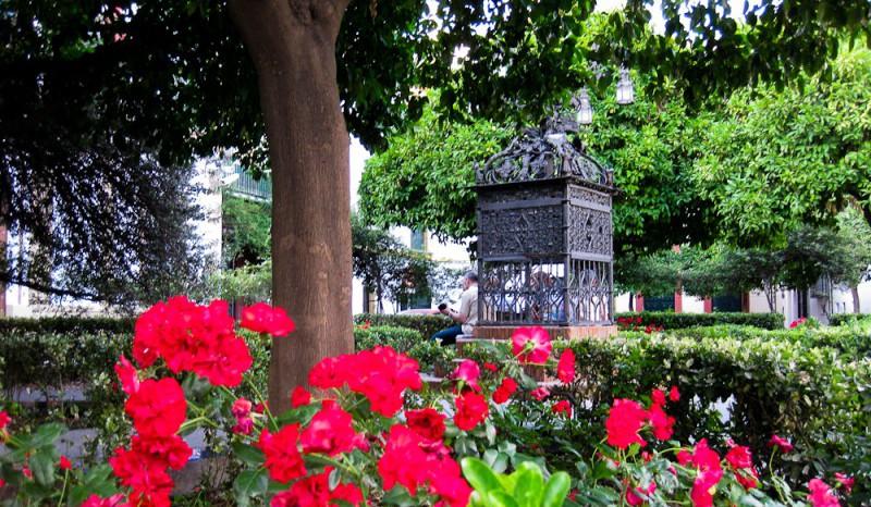 Plaza de Santa Cruz, Sevilla